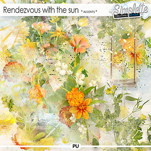 Rendezvous with the sun (accents) by Simplette