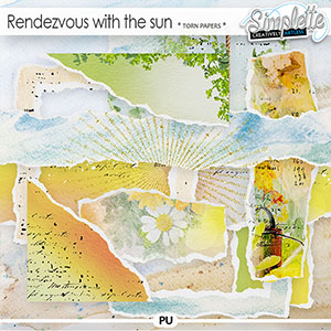 Rendezvous with the sun (torn papers) by Simplette
