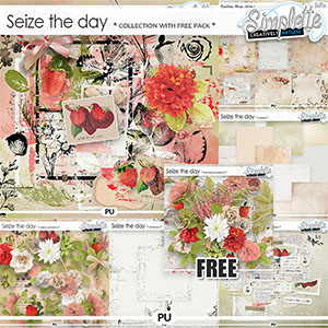 Seize the Day (collection with FREE pack) by Simplette