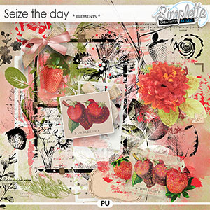 Seize the Day (elements) by Simplette