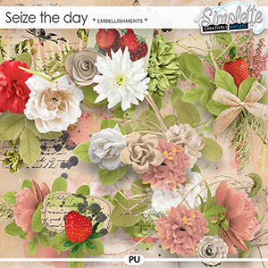 Seize the Day (embellishments) by Simplette