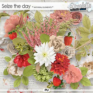 Seize the Day (natural elements) by Simplette
