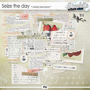 Seize the Day (words and pieces) by Simplette
