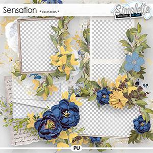 Sensation (clusters) by Simplette