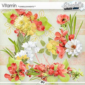 Vitamin (embellishments)
