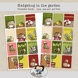 SoMa Design Hedgehog in the garden Cards