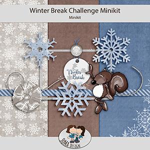 SoMa Design: Winter Break - Challenge Minikit