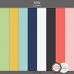 Bloom - Solids