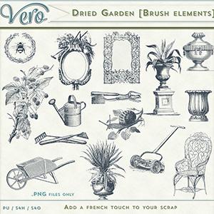 Dried Garden Brush Elements by Vero