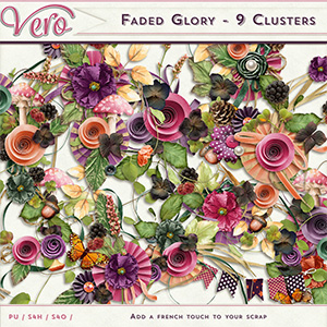 Faded Glory - Clusters