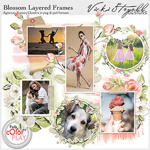 Blossom Layered Frame Clusters
