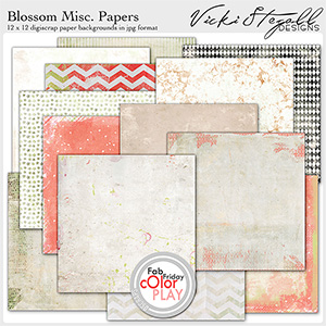 Blossom Miscellaneous Papers