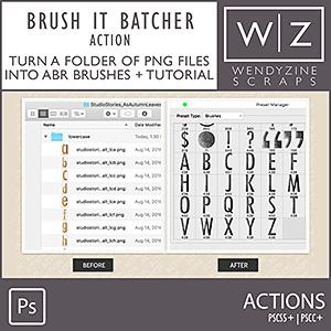 ACTION: Brush It Batcher PSCS/CC