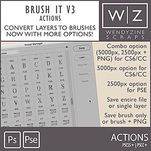 ACTION: Brush It v3