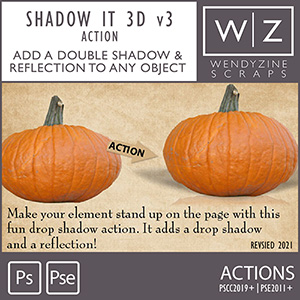 ACTION: Shadow It 3D