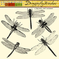 Dragonfly Brushes