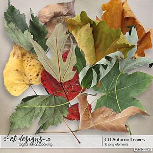 CU Autumn Leaves
