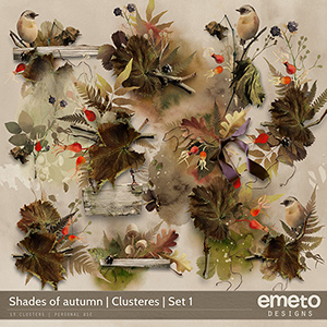 Shades of autumn - Clusters | Set 1
