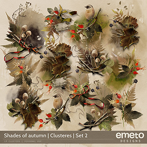 Shades of autumn - Clusters | Set 2