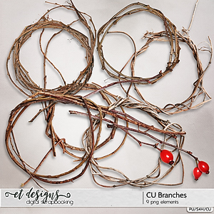 CU Branches