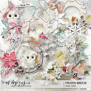 Frozen Breeze Clusters by et designs