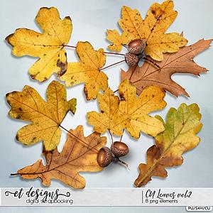 CU Leaves vol.2