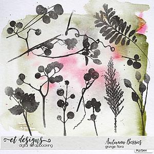 Autumn Berries Grunge Flora