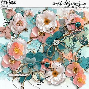 Bird Song Clusters