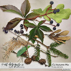 CU Autumn Mix