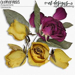 CU Dried Roses