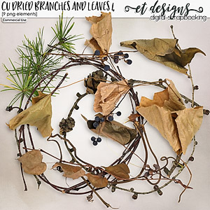 CU Dried Branches and leaves 4
