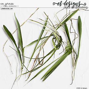 CU Grass