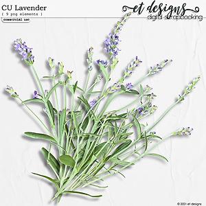 CU Lavender by et designs