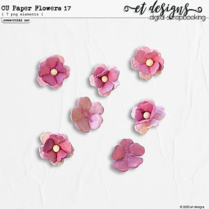 CU Paper Flowers vol.17