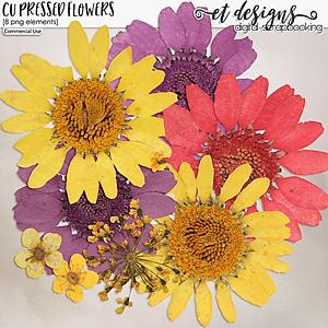 CU Pressed Flowers 1