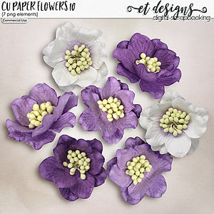 CU Paper Flowers vol.10