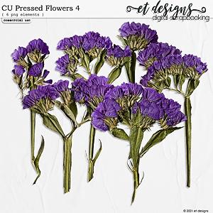 CU Pressed Flowers 4