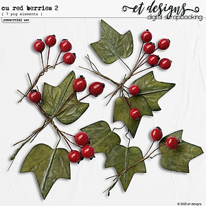 CU Red Berries vol.2