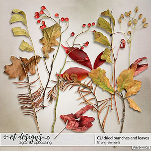 CU Dried Branches and Leaves