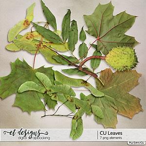 CU Leaves
