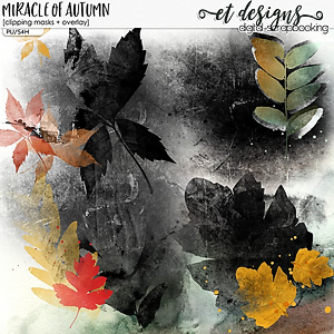 Miracle of Autumn Clipping Masks