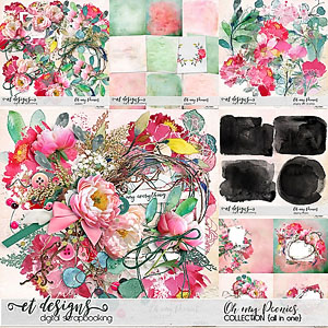 Oh my Peonies Collection