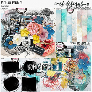 Picture Perfect Bundle & FREE with purchase bonus pack