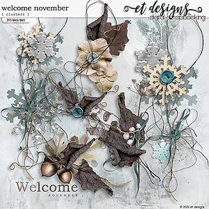 Welcome November Clusters