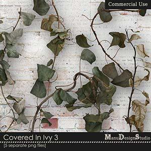 Covered In Ivy 3 - CU