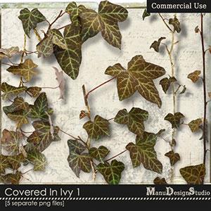 Covered In Ivy 1 - CU
