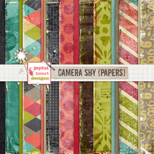 Camera Shy (papers)