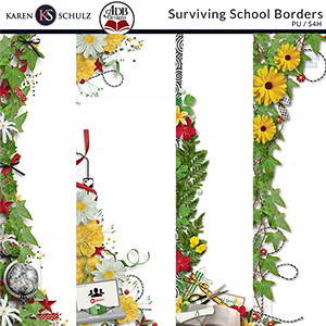 Surviving School Borders