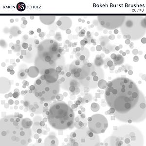 Bokeh Burst Brushes