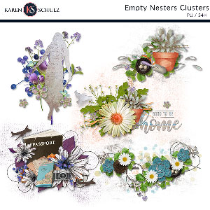Empty Nesters Clusters